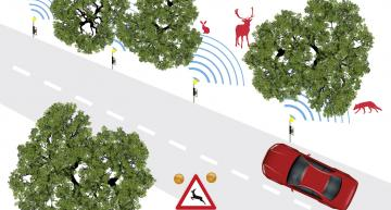 Self-learning roadside radar to prevent accidents with wildlife