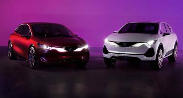 Poland plans homegrown e-car brand