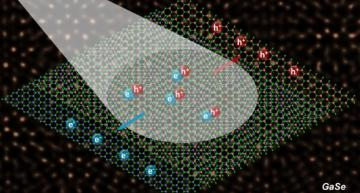 The schematic's background is a scanning transmission electron microscope image showing the bilayer in atomic-scale resolution.  (Image by Xufan Li and Chris Rouleau)