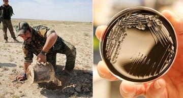 Bacteria biosensors to detect underground explosives