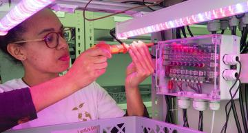 Bristol vertical farm technology developer LettUs Grow is building two LED-based vertical farms to feed vulnerable communities Credit: Jack Wiseall
