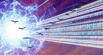 ETSI guidance for a quantum-safe world