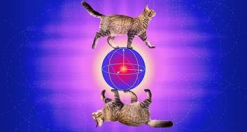 Error-correcting 'cat qubit' advances practical quantum computing