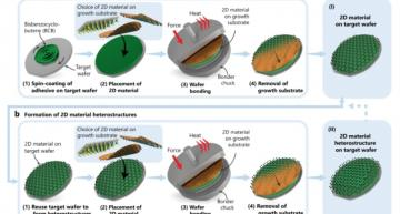 Process adds graphene and 2D materials to semiconductor lines