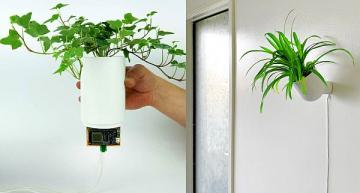 Smart zero-waste green living system brings nature indoors
