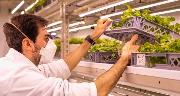 LettUs Grow teams for greenhouse technology trial