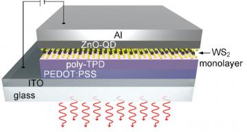 Atomically-thin LED