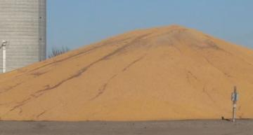 A grain pile in Nebraska monitored by Telesense