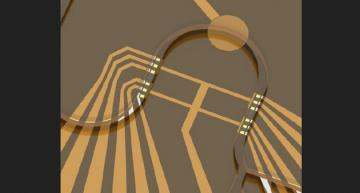 Pandemic boost set to reshape microfluidics market