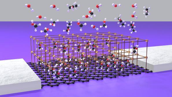 Innovative gas sensor is based on graphene FET