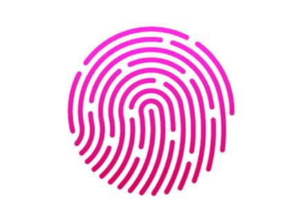 ST, Fingerprint Cards to develop biometric payment