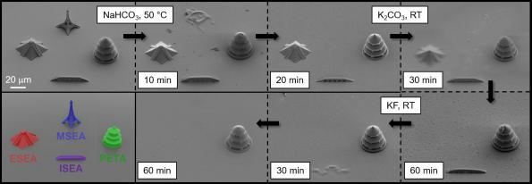 """3D printing """"inks"""" can be erased selectively"""