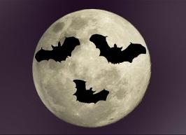 Vampire power and the need to save energy little and often