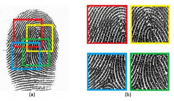 Fingerprint security on smartphones more vulnerable than thought