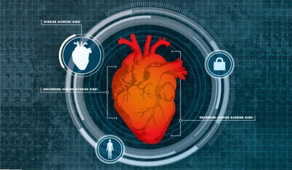 Remote heart scan ID system continuously authenticates users
