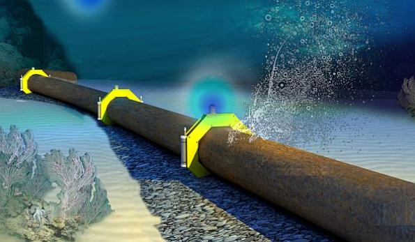 Living sensors promise real-time leak detection in pipelines