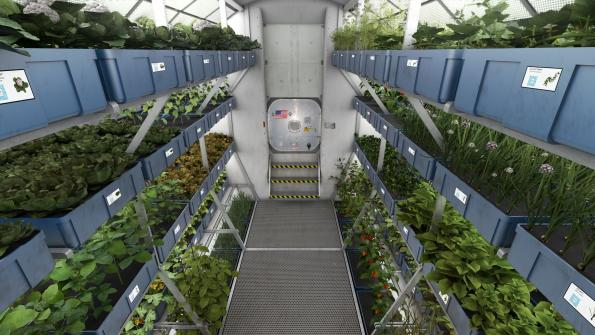 Osram's LEDs for NASA's food production research