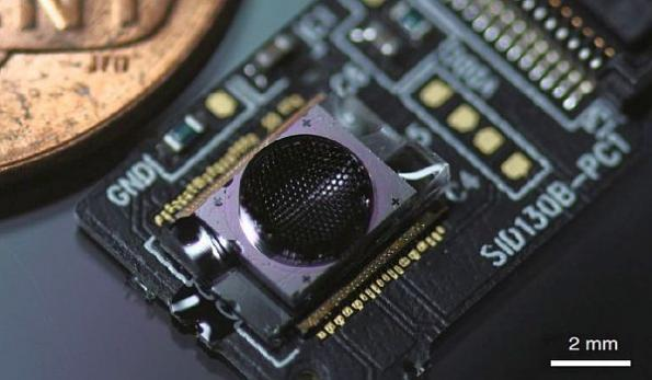 Ultrathin digital camera inspired by eyes of wasp parasite