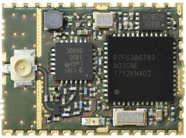 LoRa module is built around Renesas' Synergy platform