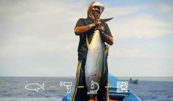 Blockchain tracks fresh tuna from 'ocean to table'