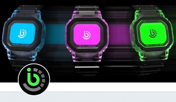 Smart wristband to track customer data at family entertainment venues