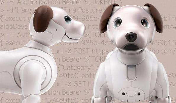 Sony robotic dog software update opens device to customization