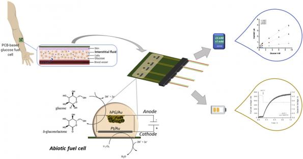 A Glucose Fuel Cell (GFC) developed at the University of Bath can be stacked four deep on a PCB to generate power from sweat
