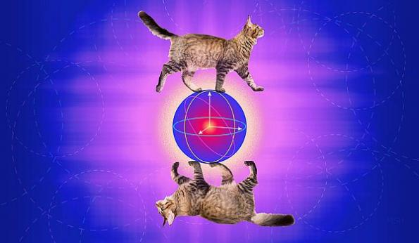 Error-correcting 'cat qubit' advances practical quantum computing