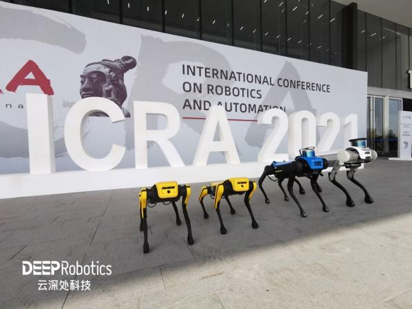Series of robotic dogs demonstrated