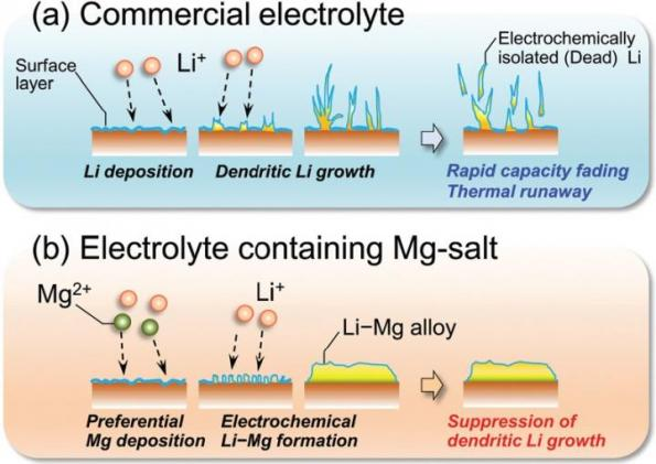 Magnesium salts improve lithium ion cell safety