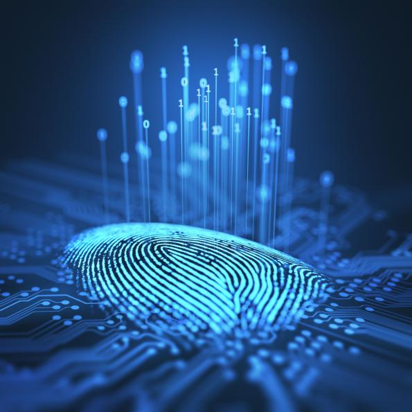 Gaining an understanding of biometrics