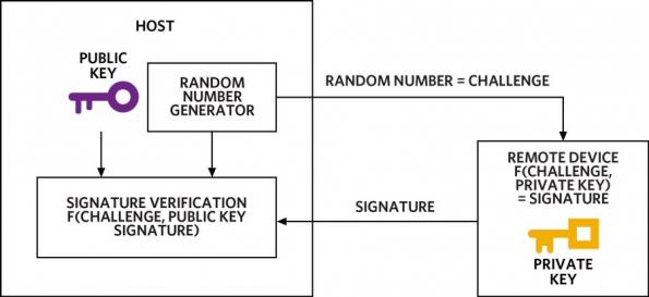 Implementing secure authentication without being a