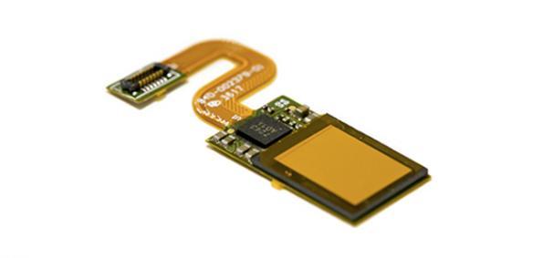 Fingerprint sensors go under display