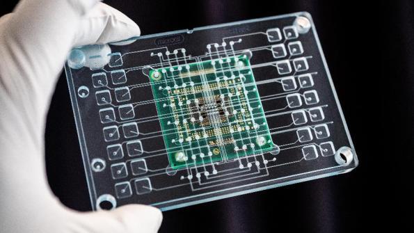Organ-on-chip platform for drug screening