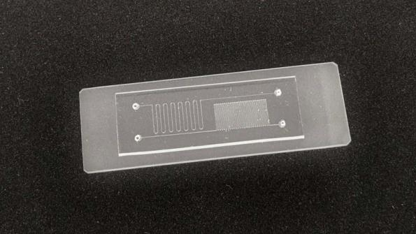 LCD tech for mass production of microfluidic chips