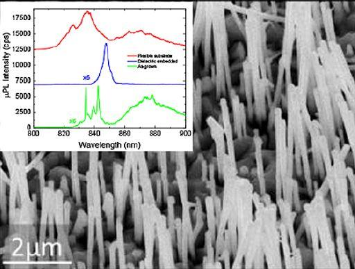 Vertically standing GaAs nanowires transferred on flexible substrate