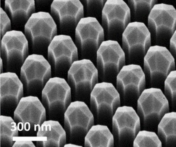 Filling LEDs' green gap with dodecagonal-faced wurtzite nanowires