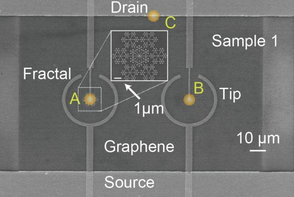 Snowflake-shaped electrodes boost graphene's photoabsorption