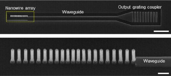 Nanowire array lasers readily coupled to waveguides