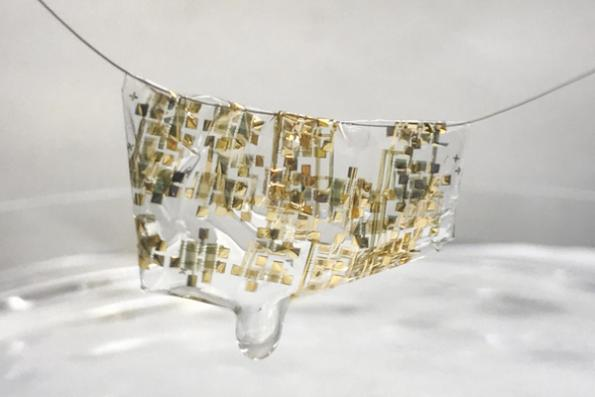 Stanford makes biodegradable semiconductor ICs