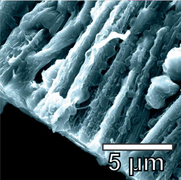 LITHIUM METAL COATS THE HYBRID GRAPHENE AND CARBON NANOTUBE ANODE IN A BATTERY CREATED AT RICE UNIVERSITY. THE LITHIUM METAL COATS THE THREE-DIMENSIONAL STRUCTURE OF THE ANODE AND AVOIDS FORMING DENDRITES. CREDIT: TOUR GROUP/RICE UNIVERSITY
