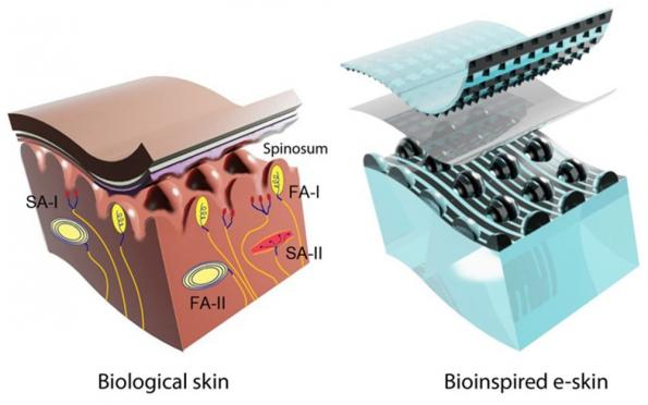 e-skins beats human touch with CNT-based structured capacitors