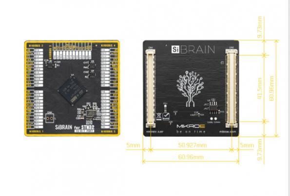 SiBrain module takes on microcontrollers