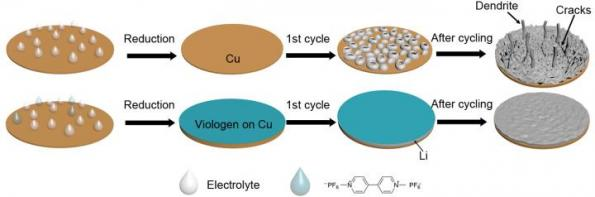 UCR researchers use methyl viologen for stabilizing metal anodes