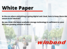 A prominent leader in the semiconductor memory technology segment: Winbond